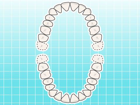 永久歯(エイキュウシ)