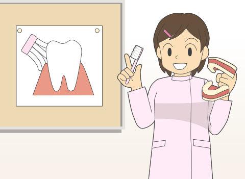 歯科衛生士(シカエイセイシ)