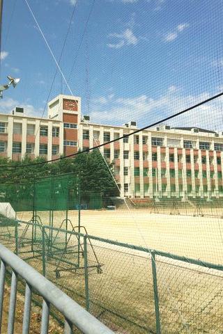 創部100周年を迎えた育英高等学校の野球部