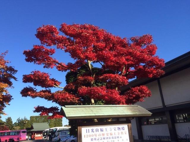 紅葉の名所が点在、楽しみ方も色々「日光」