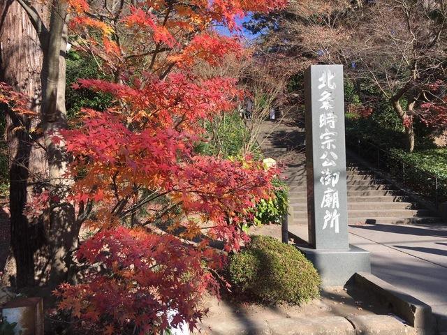 あじさいだけじゃない、秋は「鎌倉」で紅葉を楽しむ