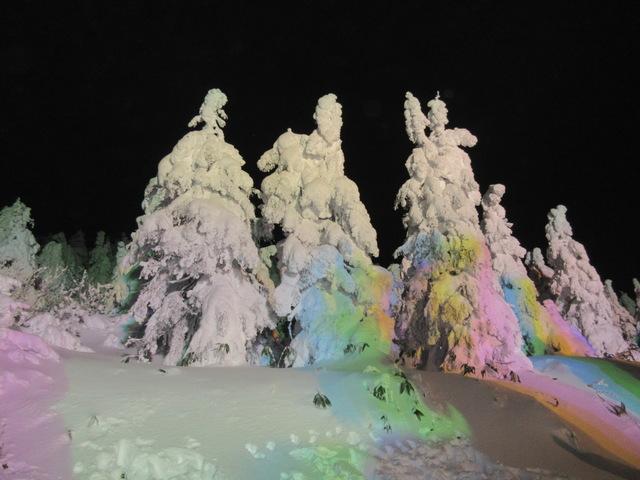 幻想的な夜のライトアップ「蔵王樹氷まつり」