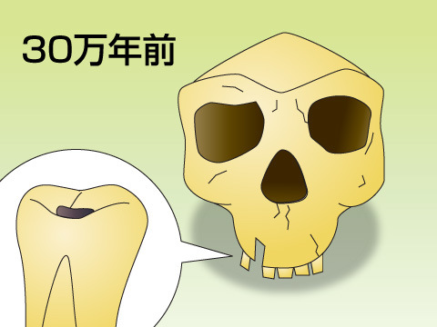 世界の歯科の歴史