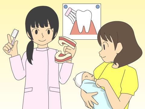歯科保険指導