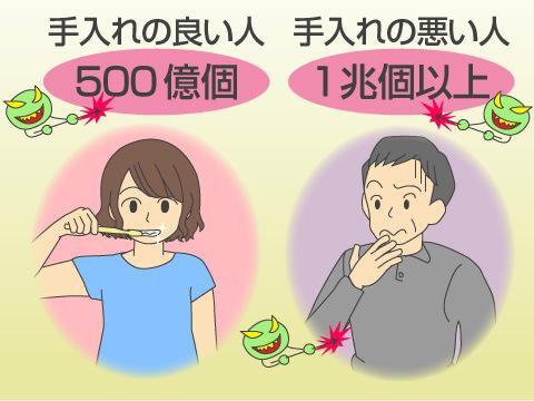 歯周病と全身の健康との関係