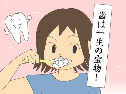 日本歯磨工業会独自のバックアップ活動