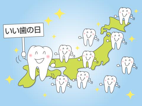 歯科保健条例により定められた活動