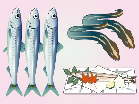 夏が旬の魚介類