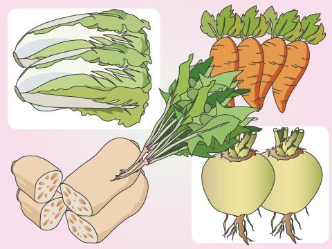 冬が旬の野菜