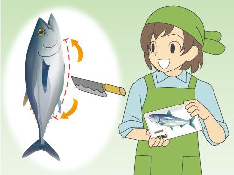 魚の切り方