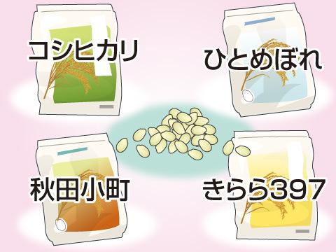 米の種類について