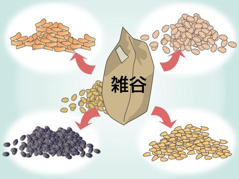雑穀米について