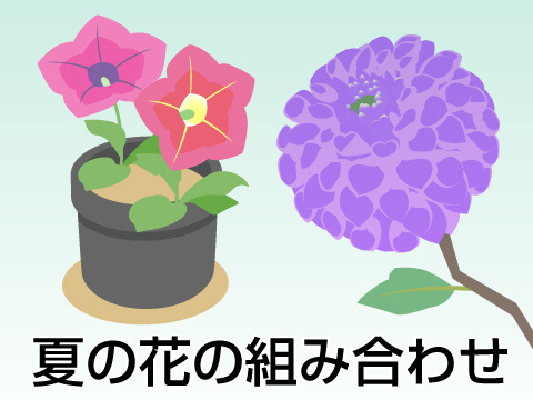 夏のガーデンの花の組み合わせ方
