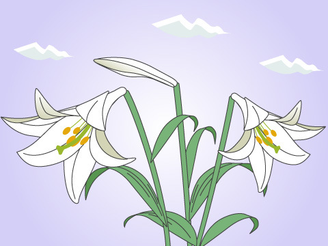 ユリ(開花時期:6~7月)