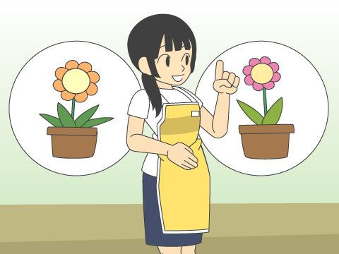 冬のガーデニングの花の組み合わせ方