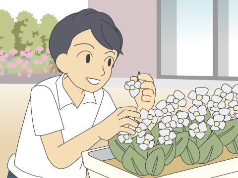 花がら摘み、落ち葉・枯れ葉除去