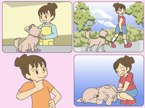飼い主の責任