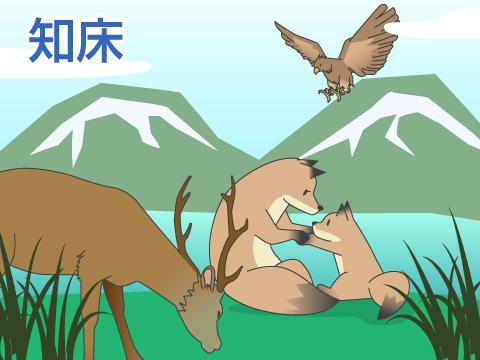 日本の観光施設を巡る「知床(北海道)」