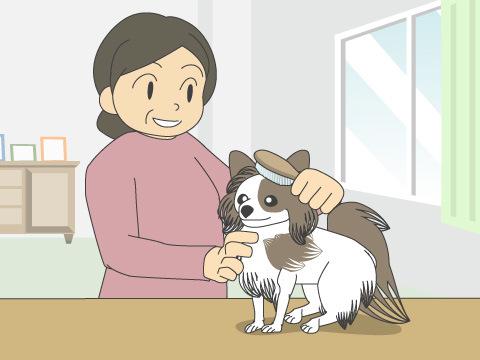 飼育上の留意点