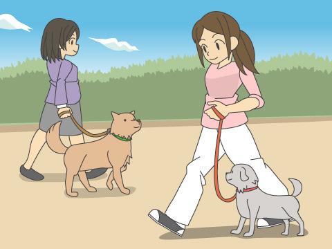 他の犬と出会ったら