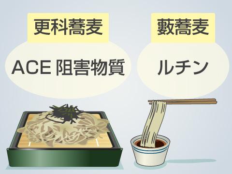 栄養面から見る更科蕎麦と藪蕎麦の違い