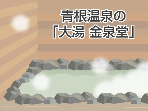 青根温泉の「大湯 金泉堂」(宮城県)