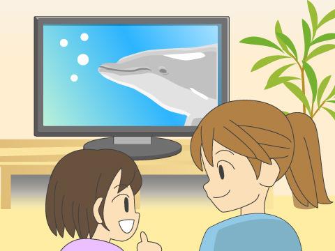 おすすめCD&DVD