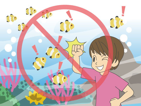 見学マナーを守ることは、生き物への当然の配慮
