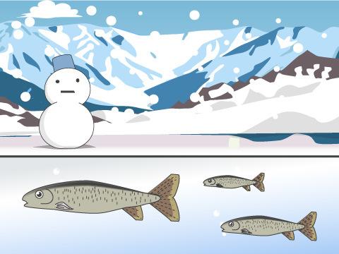 世界初の冬に凍る川の水槽