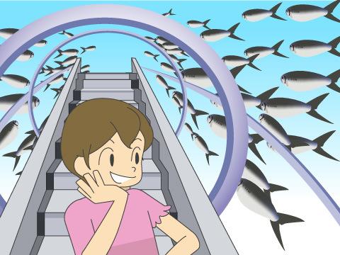イワシの大群泳は圧巻