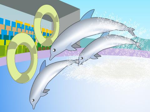 海獣たちを身近に感じるショー&体験プログラム