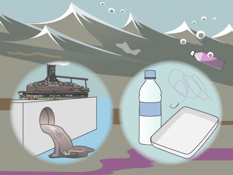 ゴミや有害物質による海洋汚染が命を脅かす
