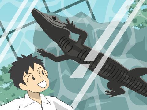 ワニの生態がよくわかる水族館