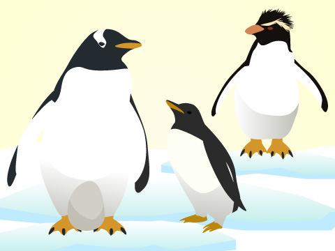 ペンギンの繁殖