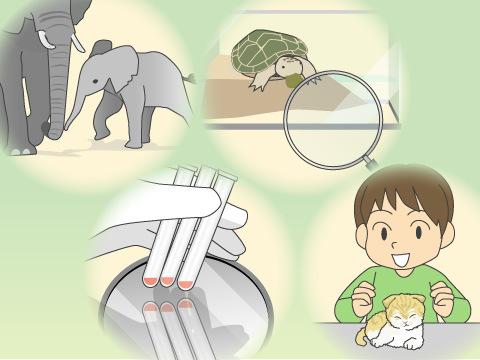 動物園の4つの目的