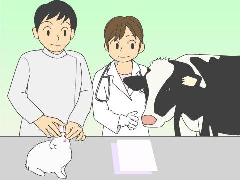 動物の病気の予防・救護・治療に関わる人たち