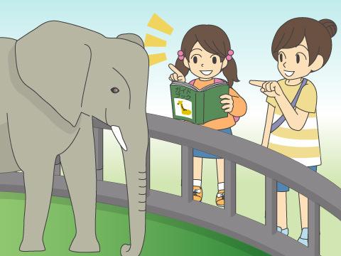動物のエピソードも一つ、二つ心に入れて出かけよう