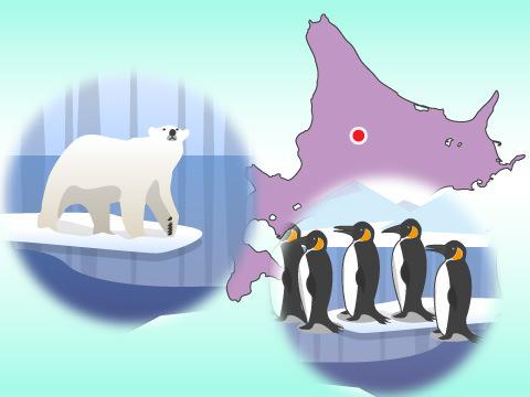 旭川市旭山動物園(北海道)