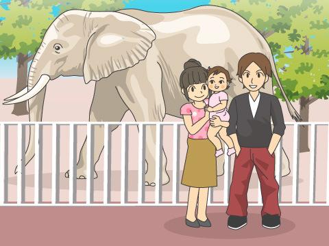 宮崎市フェニックス自然動物園(宮崎県)