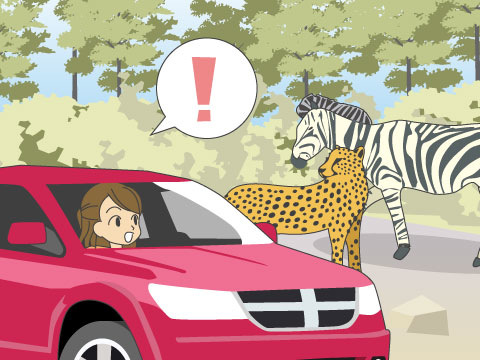 九州自然動物公園アフリカンサファリ(大分県)