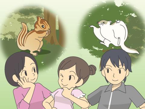 北海道の小動物とふれあえる「ドサンコの森」