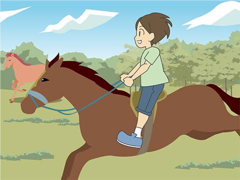 3歳から楽しめる乗馬が魅力