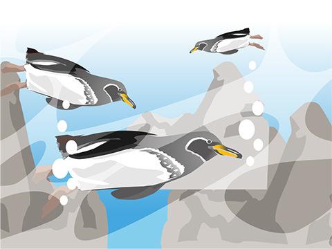 回遊魚ほどの速さで水の中を飛ぶ「ペンギン」