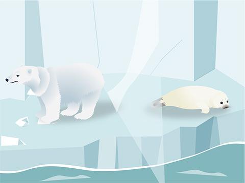 大人気の「ホッキョクグマとアザラシの海」