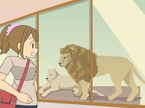 20mにわたってガラスビューが続く「PRIDE OF LION」