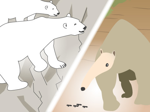「動物との出会いがあしたを変える」をテーマにますます魅力的に