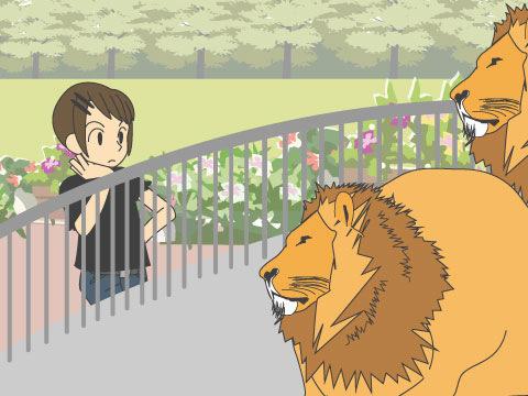 猛獣たちの迫力ある姿を間近で観察できる「猛獣館299」