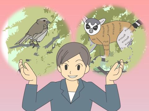 ふさわしい生息環境で、のびのび暮らす動物たち