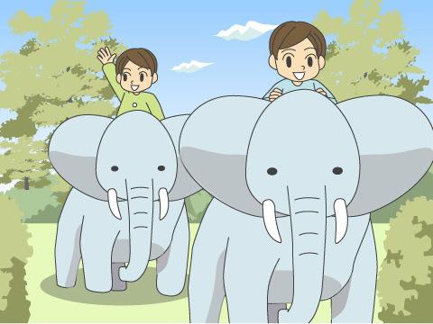 ゾウさんショー、ゾウさんライドも人気