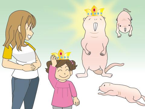 女王のもと集団生活を行なう「ハダカデバネズミ」